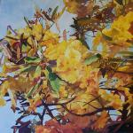 Tabebuia 24 x 24 Watercolor on Aquabord $2500 Special Offering $1500